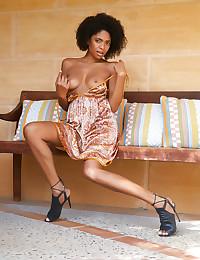 Luna C nude in erotic FOXY FLAIR gallery - MetArt.com