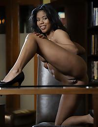 Nia Nicce bare in erotic EXECUTIVE gallery