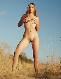 Erotic Hottie - Naturally Beautiful Fledgling Nudes