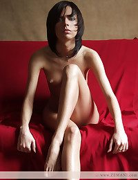 Uncompromisingly stunning brunet poses bare on be passed to crimson coach.