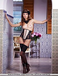 Enticing harness and cool embroidery tights and poniard sandals makes one despondent series.